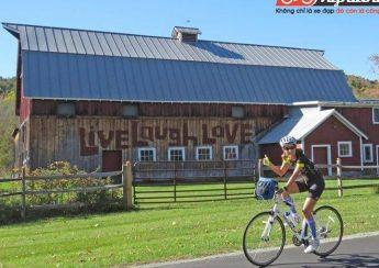 Ấn tượng đầu tiên về xe đạp Woodstock 2