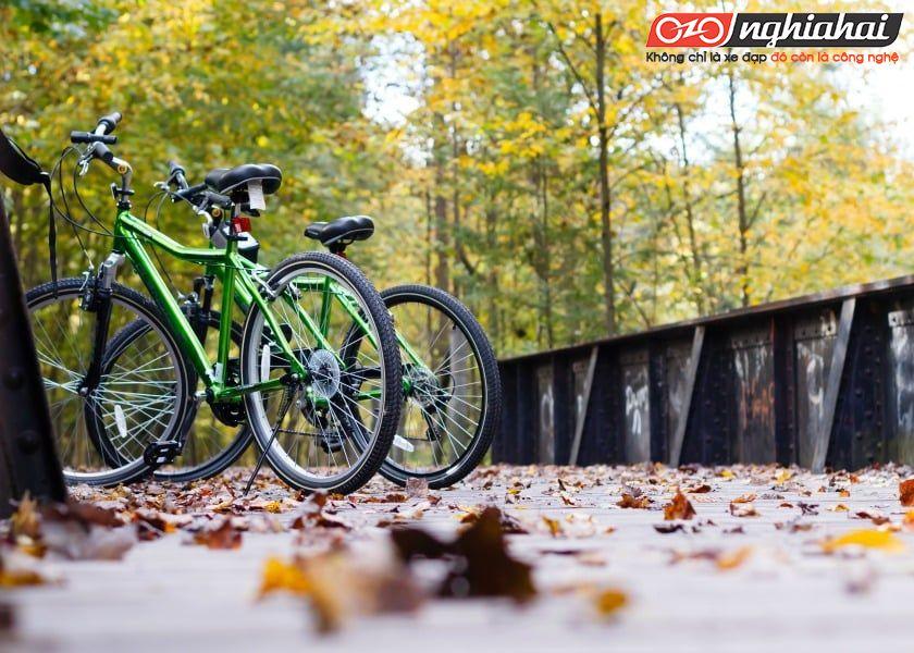 Những chuyến đi bằng xe đạp khởi sắc 1