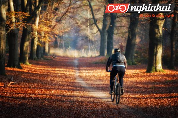 Những chuyến đi bằng xe đạp khởi sắc 4