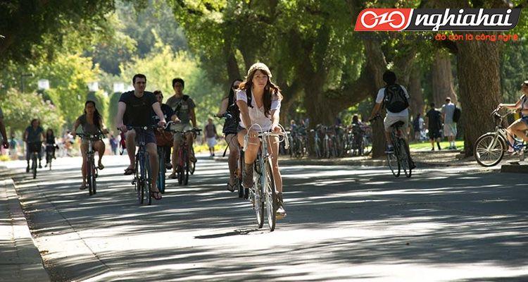 Xây dựng khuôn viên thân thiện với xe đạp 2
