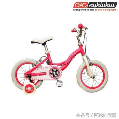 Cách chọn mua xe đạp cho trẻ em 2