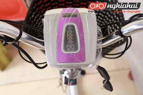 Kinh nghiệm chọn mua xe đạp điện 2