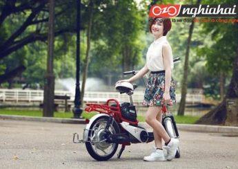 Thương hiệu Xe đạp điện chính hãng Nhật Bản 3