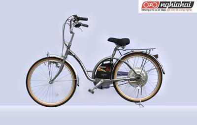 Xe đạp điện loại nào tốt 2