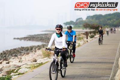 Điều trị các cơn đau cơ cùng xe đạp thể thao 1