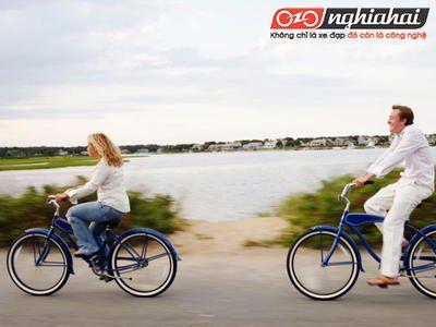 Những tính năng của xe đạp mini Nhật Bản 1
