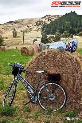 Những sai lầm thường mắc phải khi mới đạp xe đạp địa hình 1