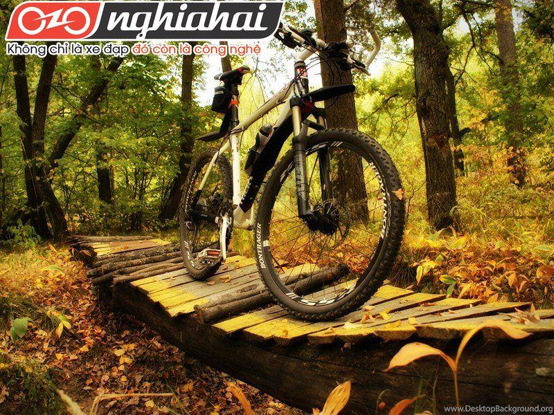 Các tai nạn có thể xẩy ra khi sử dụng xe đạp địa hình 2
