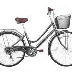 Xe-đạp-cào-cào-WAA-2671-xam-150×150