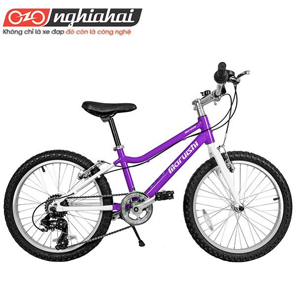 Xe-đạp-trẻ-em-Nhật-7S-Future-Star-20″-1