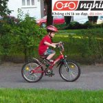 Những lầm tưởng về xe đạp trẻ em 3
