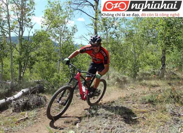 Lịch sử của bộ môn đạp xe leo núi 1