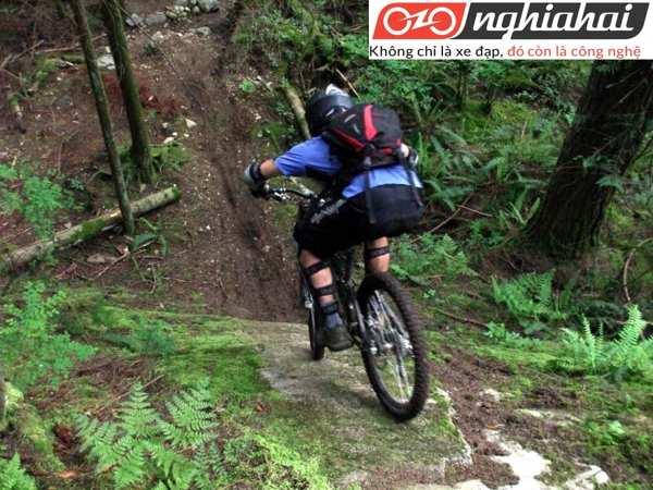 Lịch sử của bộ môn đạp xe leo núi 2