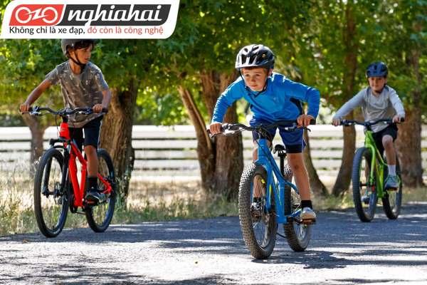 Tìm hiểu phanh tay ở xe đạp trẻ em 2
