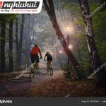 Xu hướng cho thuê xe đạp 3