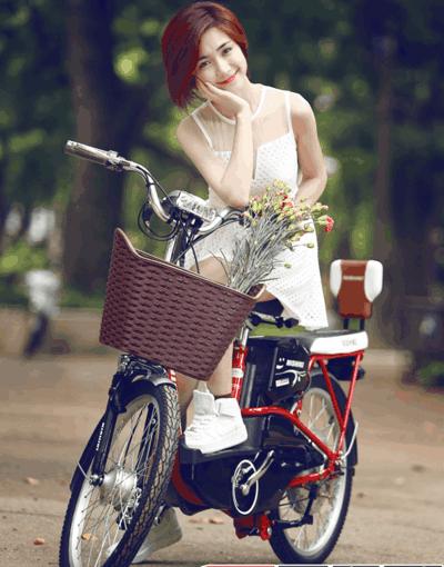 Hướng dẫn sử dụng xe đạp điện 4