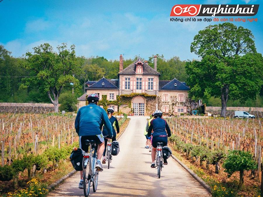 Hướng dẫn sử dụng xe đạp thể thao nhập khẩu 3