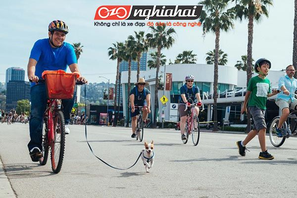 Luật xe đạp thể thao 1