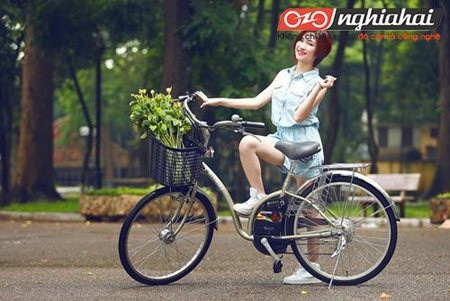 Sau một thời gian sử dụng xe đạp điện Nhật Bản 1