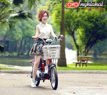 Thương hiệu Xe đạp điện chính hãng Nhật Bản 2