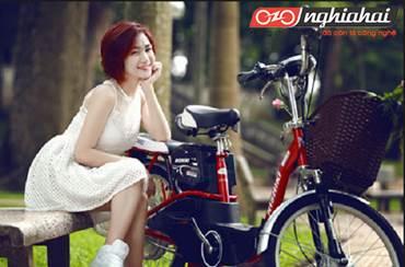 Tiêu chuẩn của xe đạp điện NISHIKI Nhật Bản 1