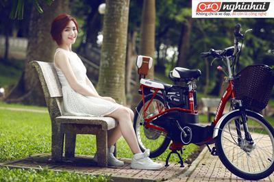 Tuổi thọ của xe đạp điện 3