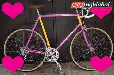 Lưu ý khi chọn mua xe đạp địa hình nhập khẩu1