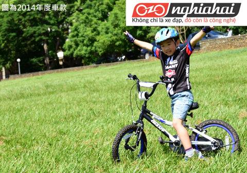 Các dòng xe đạp trẻ em. Xe đạp trẻ em giá tốt 3