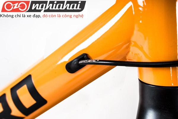 Xe đạp thể thao Peloton 14