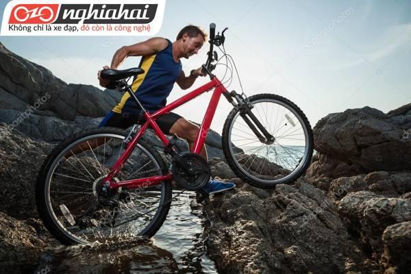 Tận hưởng cuộc sống với xe đạp của bạn 1